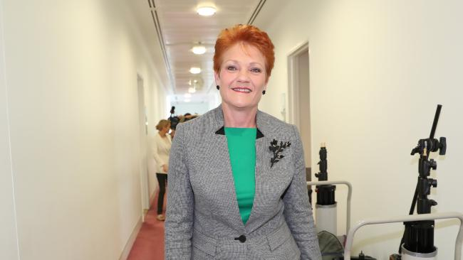 "Senator Pauline Hanson might work in Canberra as a politician, but she's not ""in government"". (Pic: Kym Smith)"