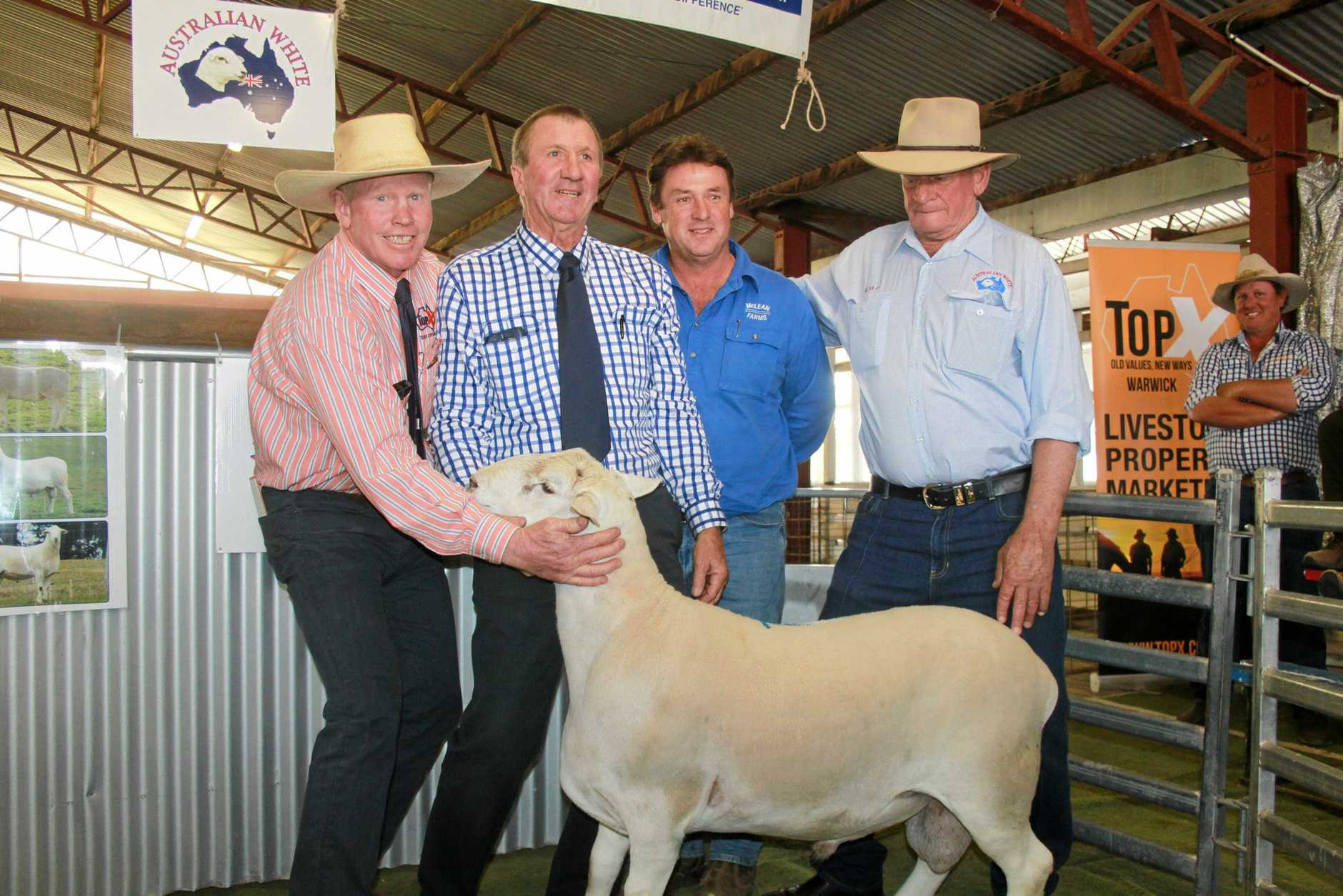 BEST ON SHOW: George McVeigh from TopX with David Friend of Nowlan Stock and Station Agents, Paul Keevers from McLean Farms and local vendor Murray Schroder.  Pictured with the $4000 top selling ram.