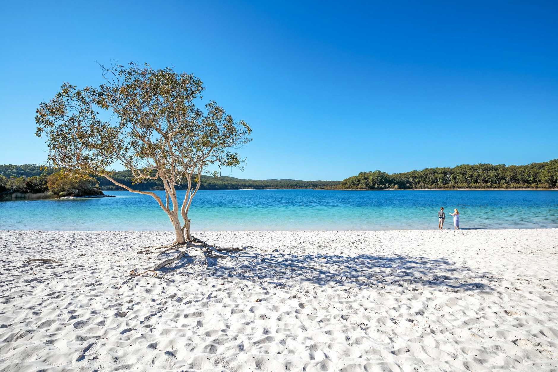 Lake McKenzie and Rainforest on Fraser Island.