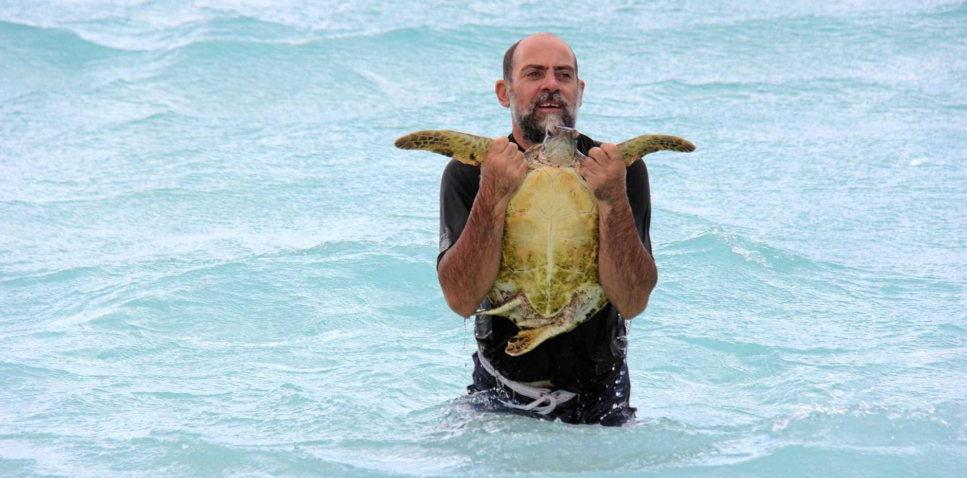 TURTLE HELP: Gladstone Local Marine Advisory Committee chair Karl French.