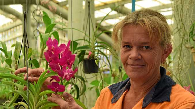 Kim Maycock loves her job as caretaker at the Ken Burgess Orchid Display House in Queens Park.