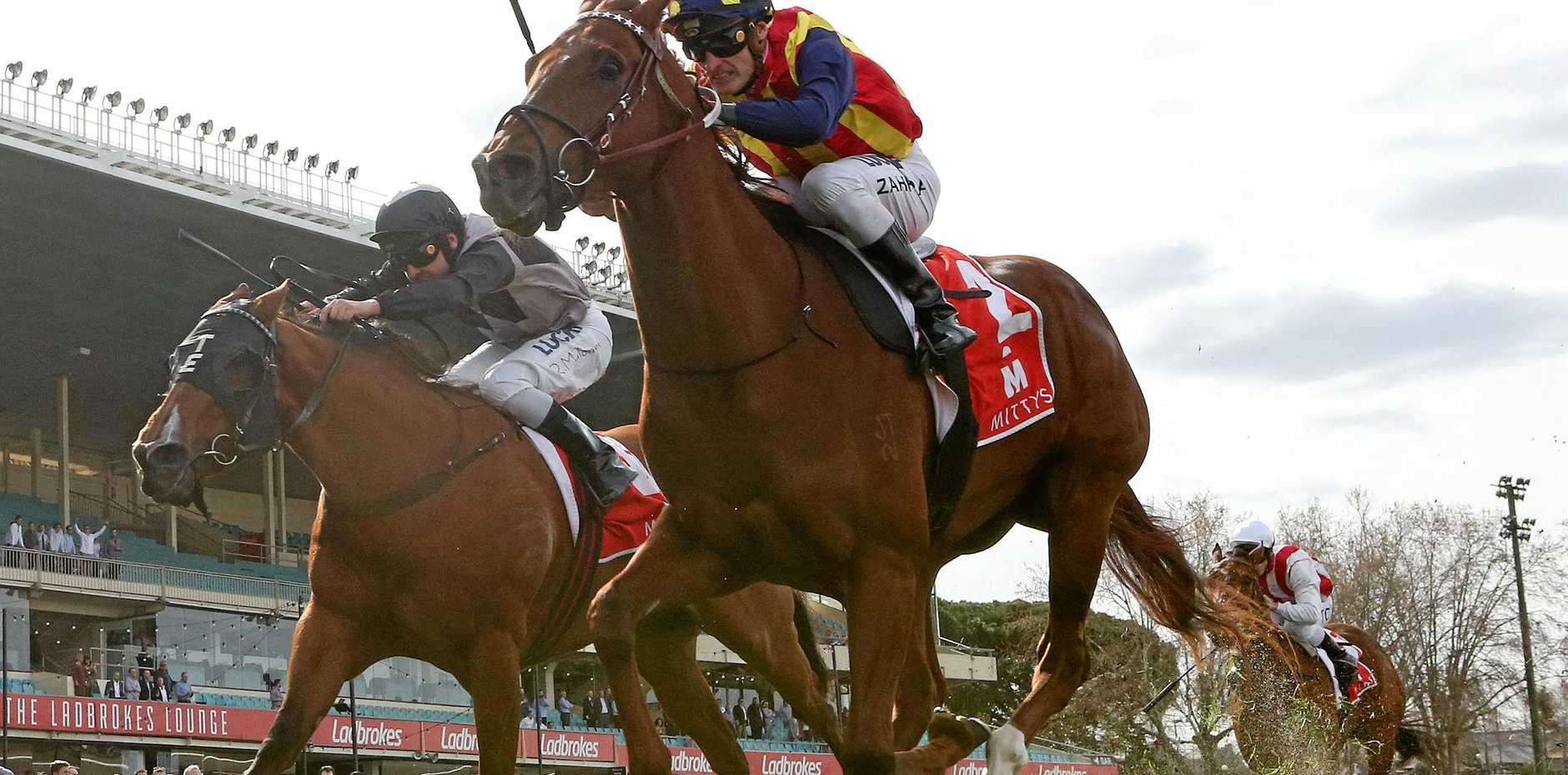 Nature Strip proves too good in the McEwen Stakes at Moonee Valley last Saturday. Picture: George Salpigtidis/AAP