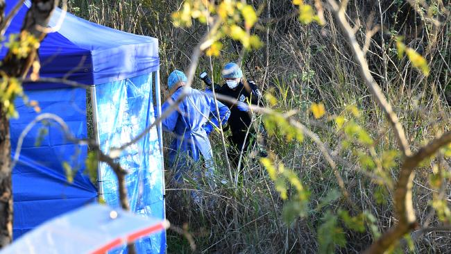 Forensic officers inspect the crime scene set up where human remains were found near the base of the Kangaroo Point cliffs. Picture: AAP/Dan Peled