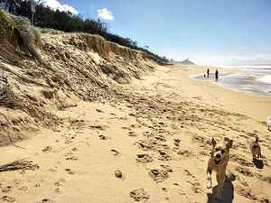 Sunshine Coast retreat inevitable in face of rising seas