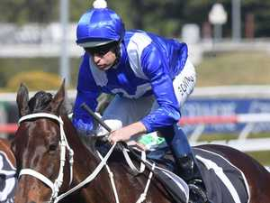 Seven horses racing for second against Winx