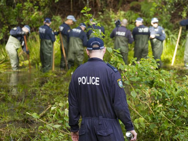 NSW Police search bushland at Batar Creek in NSW, looking for evidence in the William Tyrrell case. Picture: AAP/Shane Chalker