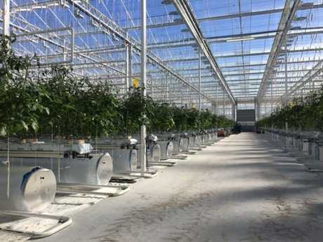 An example of a greenhouse project.