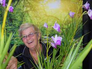 Orchid Show to bloom at Anglican Church