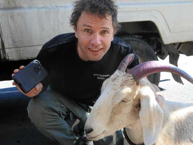 LEGEND: Jimbo Bazoobi with Gary the Goat earlier in 2017.