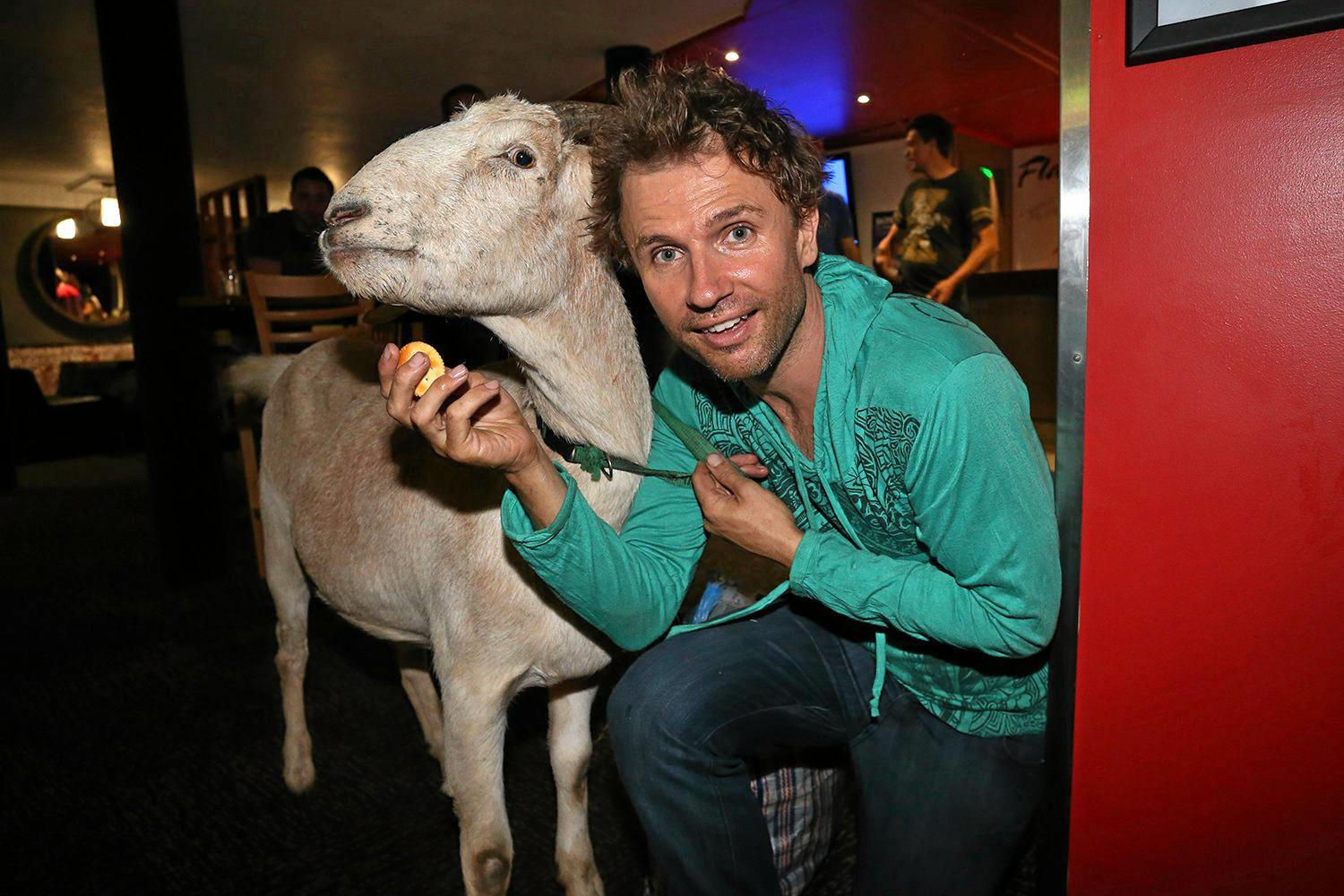LEGACY LIVES ON: Gary The Goat & Jimbo at Flamingoes. Gary the Goat is getting taxidermied in Gympie.