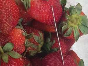 The strawberry sabotage saga continues