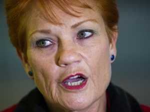Hanson slams 'pathetic' feminists