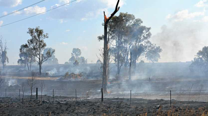 ASHES: The scene where a grass fire ripped through 123 hectares on Thursday, September 13, in Grantham.