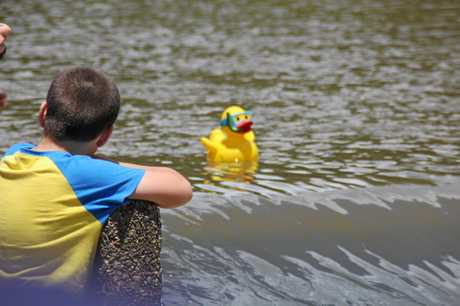 A bright yellow duck prepares to float over the Gympie weir - also doubling as the finish line in the Great Gympie Duck Race a few years ago.