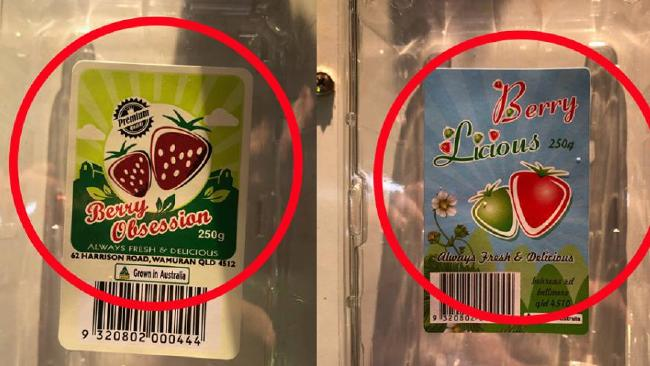 Police are looking at possible copycat contaminators. Picture: Queensland Strawberry Growers Association Facebook