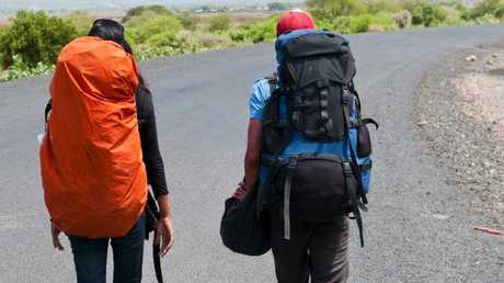A new survey has uncovered backpacker behaviour in the Far North.