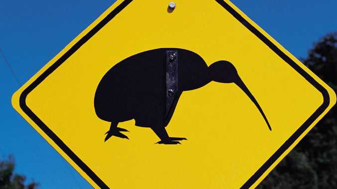 A road sign cautions drivers to be alert for the kiwi, a flightless native bird.