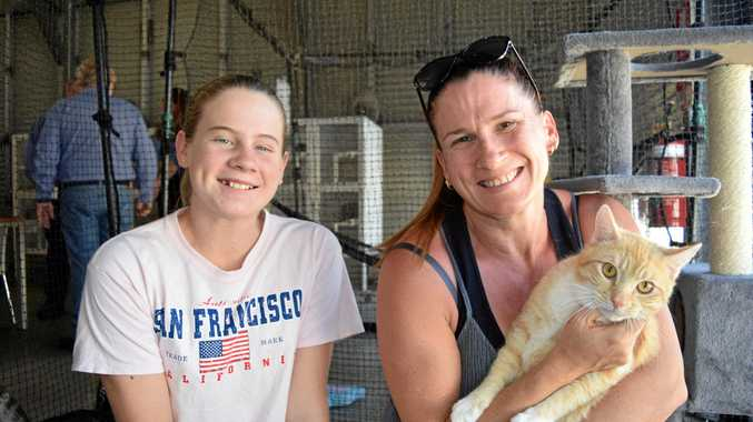 FOREVER HOME FOUND: Lahni Claridge, 12 and mum Cheryl with their new family member, Ginger. Ginger was one of about 40 cats adopted at the Hervey Bay Adoption Centre's Adopt A Cat Day on Saturday.