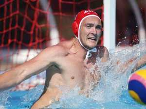 Sharks swoop on silver in World Cup