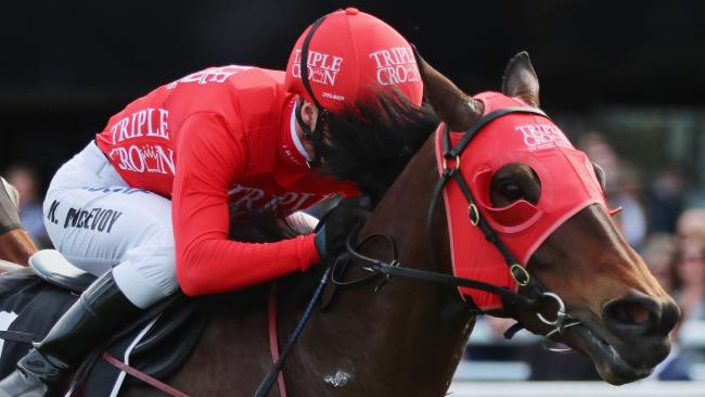 Redzel is on the mend from muscle soreness. Picture: Getty Images