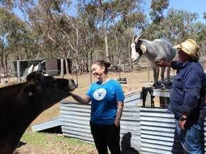 Natalie and Brett Stevenson keep cattle, goats and
