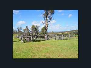 Warwick Jacaranda Farm