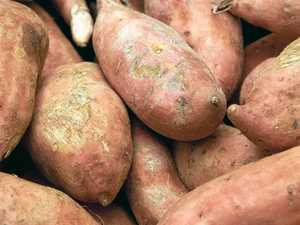 Stolen sweet potatoes thrown at cars
