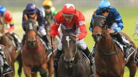 Damien Oliver riding Seabrook to victory in the Champagne Stakes earlier this year. Picture: Getty Images