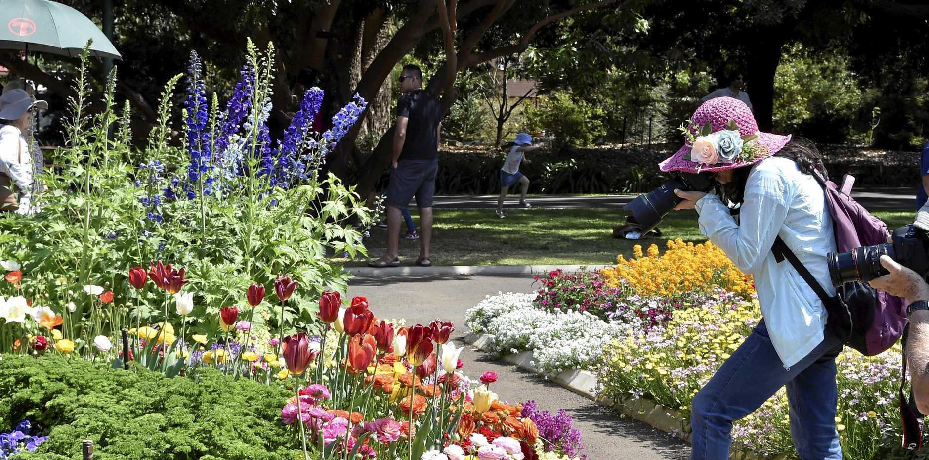 BEST EVENT: Visitors taking in the stunning flowers at Queens Park during last year's Toowoomba Carnival of Flowers.