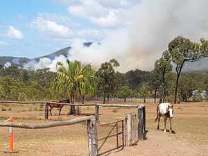 Strangers quick to help save horses from 'fast-moving' blaze