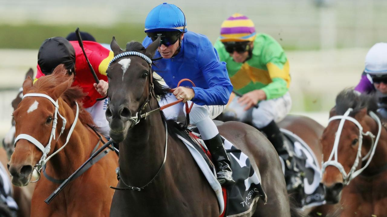 Glyn Schofield guides Avilius to victory in the Kingston Town Stakes at Randwick on September 15. Picture: Mark Evans/Getty Images
