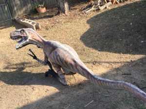 Stolen dinosaur seized in raid