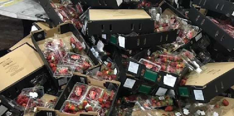 Dumped strawberries at the South Australian Produce Market. Picture: supplied