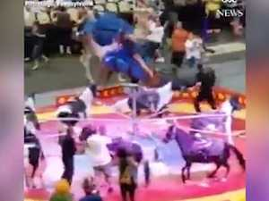 Video shows the moment a camel loses it at a circus show in Pittsburgh