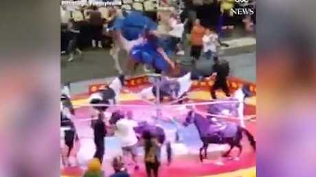 Circus camel that hurt 7 spooked by thrown shovel