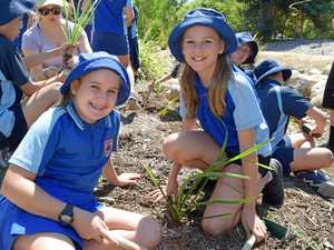 Students across Whitsundays take up Eco Challenge