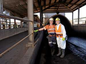 Capcoal apprenticeship applications go 'viral'