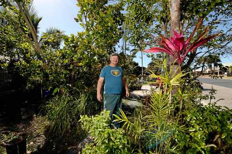 South Mackay resident Larry Murchie in his front footpath garden prior to its removal.