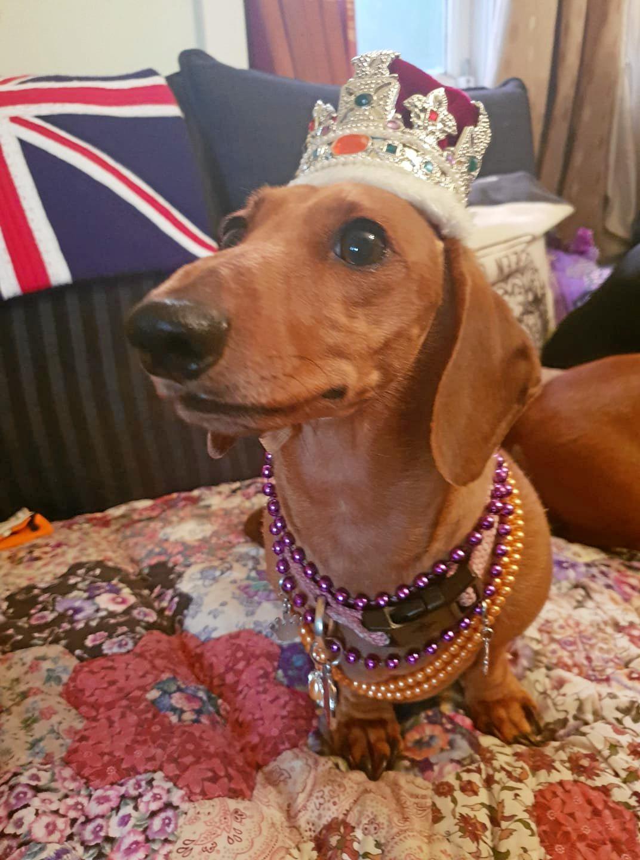 Miss Princess Vivienne Dorothy.