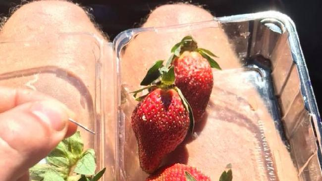 Joshua Gane was the first to discover a needle in a strawberry. Picture: Facebook