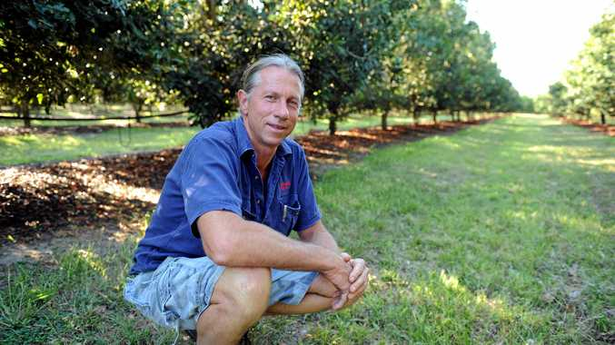 Choc-macadamia processing as Bundy cracks Chinese market