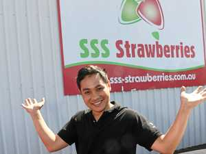 Be berry excited for tomorrow's strawberry festival