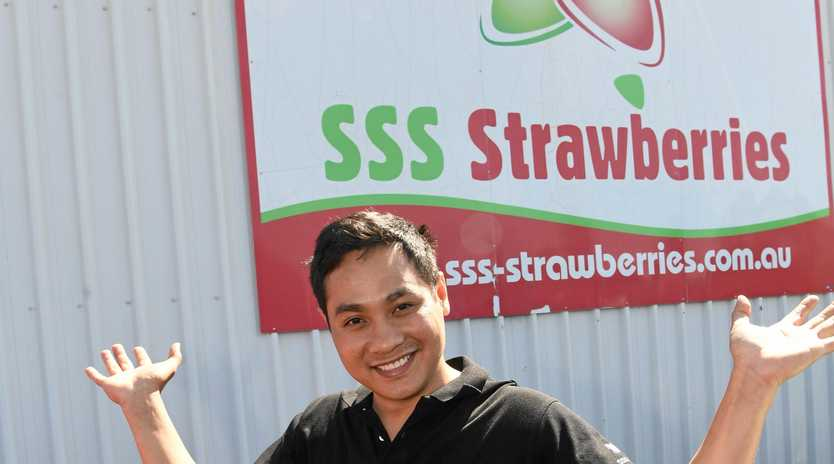 SWEET SATURDAY: Thanh Dang says it'll be fun for the whole family at the SSS Strawberries Bundaberg Strawberry Festival