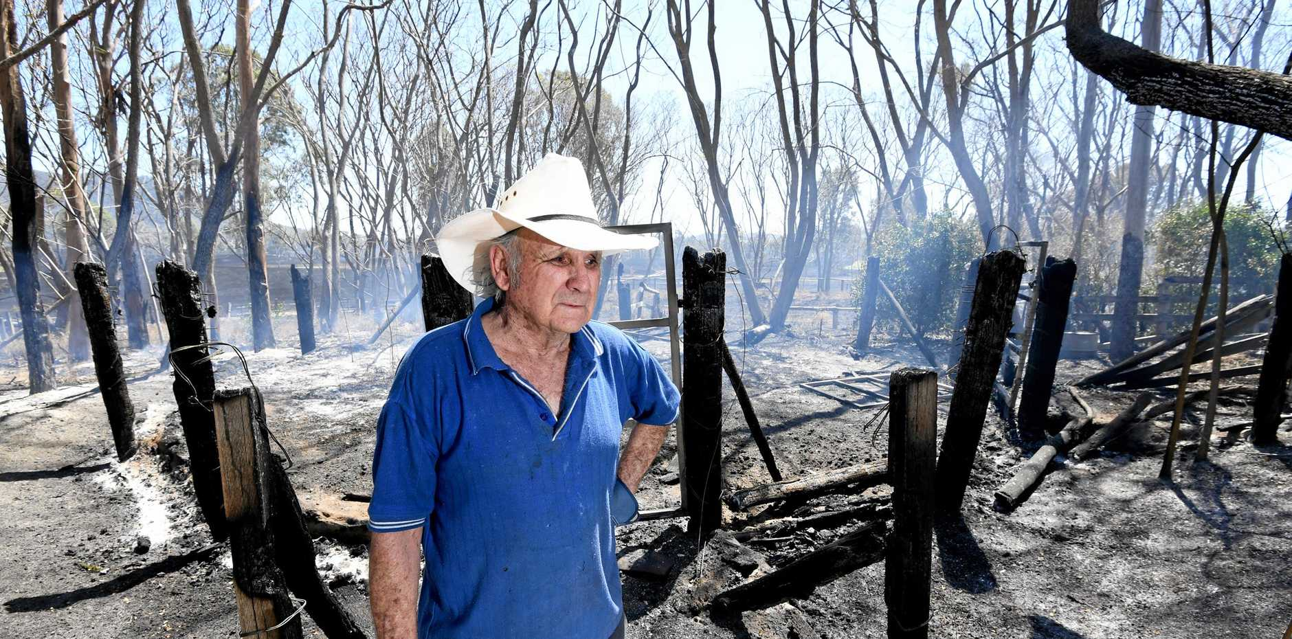 UTTER DEVASTATION: Phil Bedford is distraught after losing his grazing land in the Woolooga fire.
