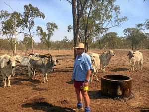 Drought forums too far away for local graziers