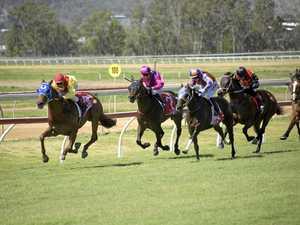 Rocky Jockey Club to take over Capricornia Yearling Sale