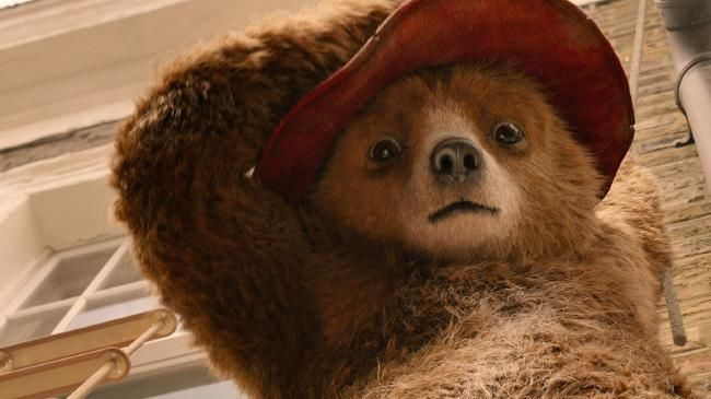 Paddington Bear in Paddington Bear 2