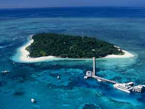 UN says Reef at risk but Deputy PM not convinced