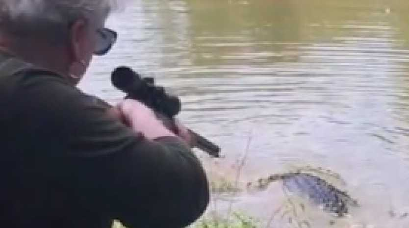 Animal right's group PETA has condemned the actions of a grandmother after she shot and killed an alligator in Texas. Picture: KTRK