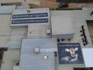 Activists swarm abattoir after horror video